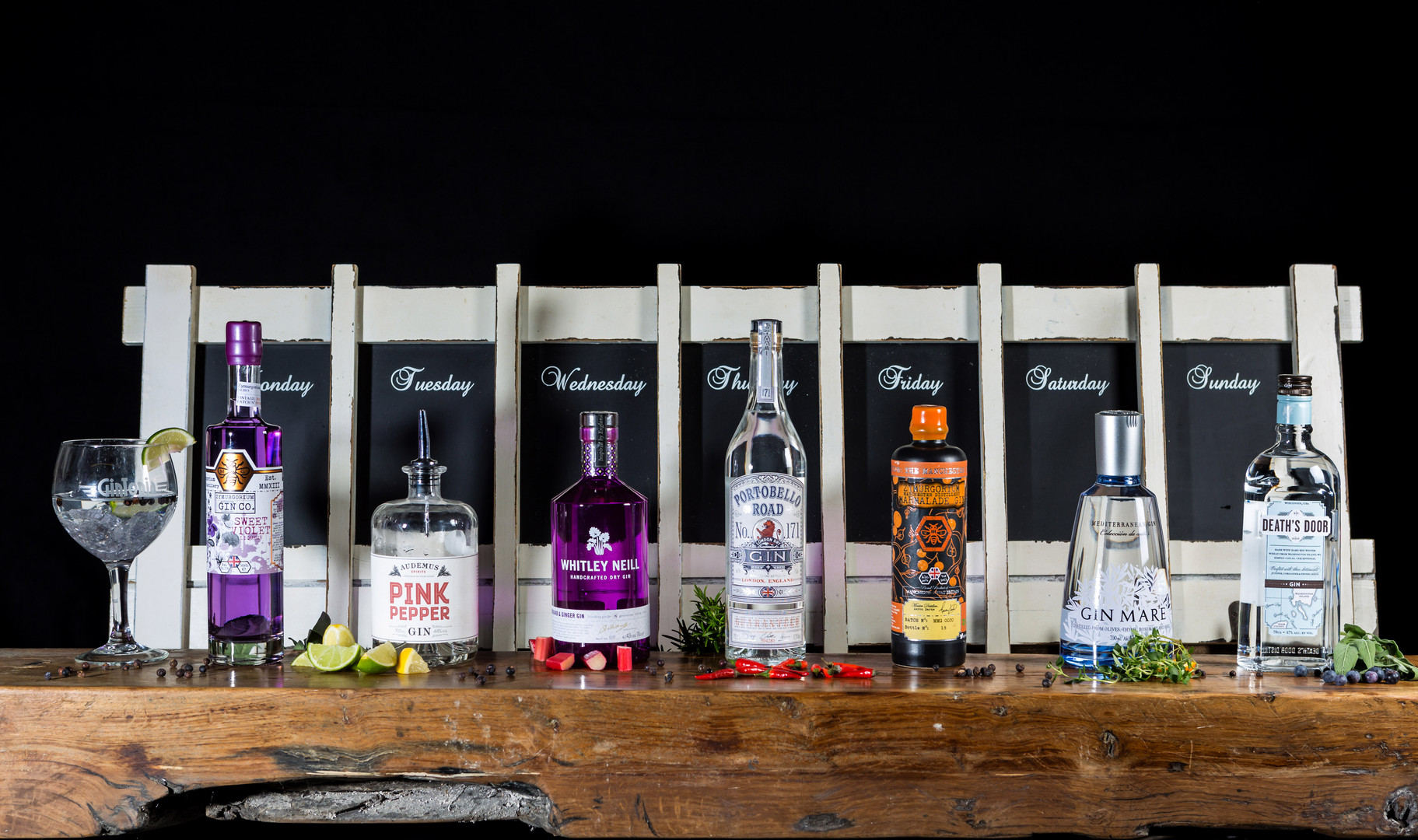 GinTopia mobile Gin Bar
