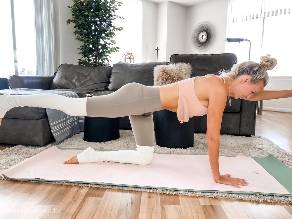 bird dog exercise alo yoga goddess leggings