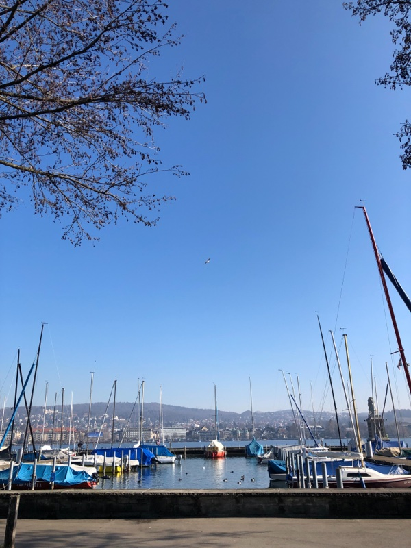 zurich water view