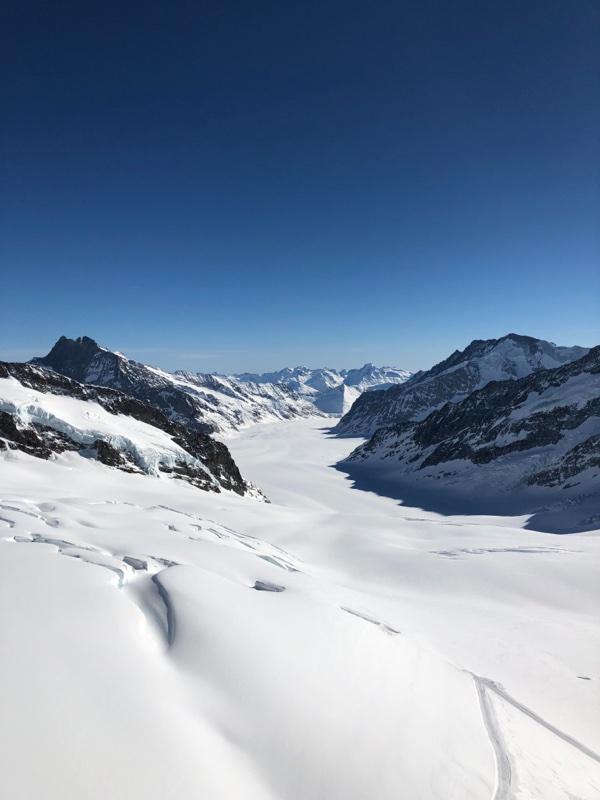 alp view