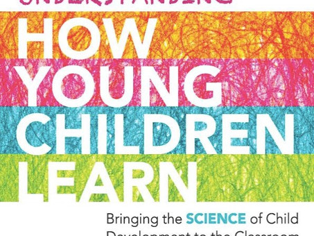 Understanding How Young Children Learn.
