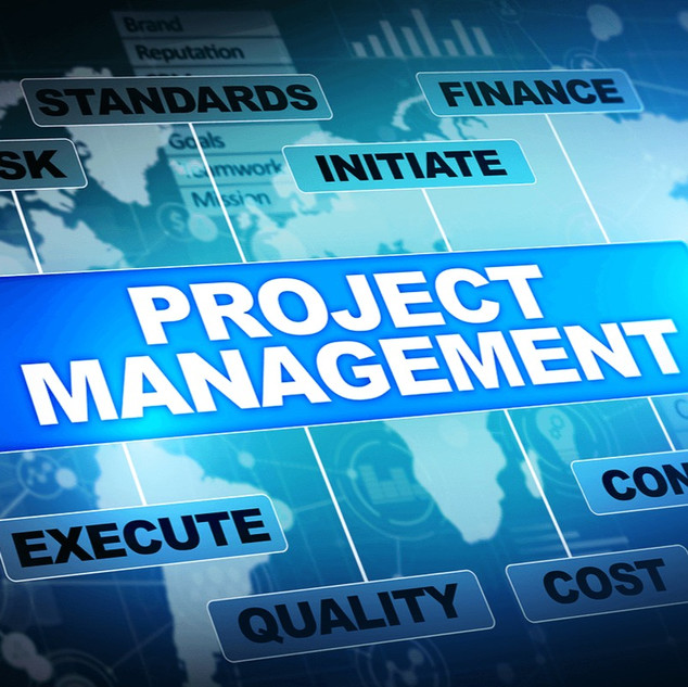 Project Managers