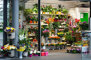 flower shelf.jpg