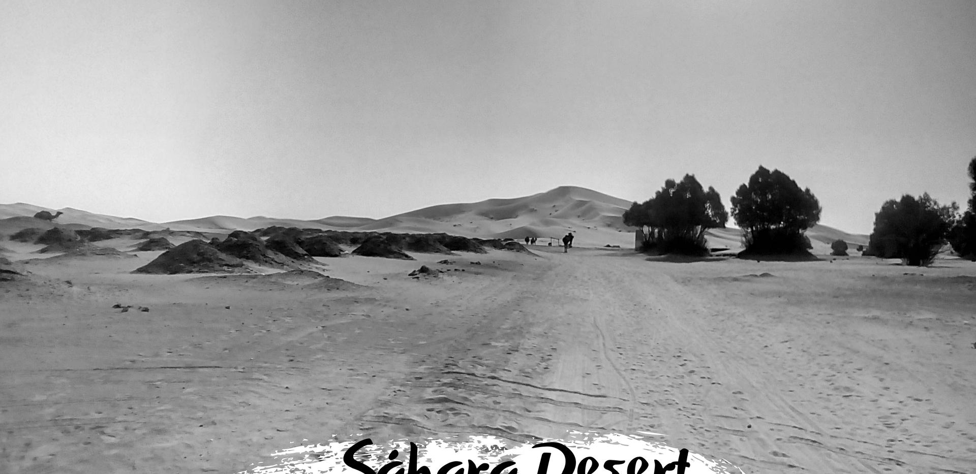 Sáhara Desert Negra.png