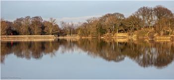 Pebbley Pond