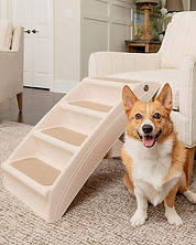 One of the best pet stairs available for small pets or older pets on My Pal Stroganoff.