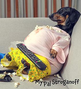 Fat Doxie Joke Picture - 11-18-20.jpg