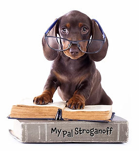 Doxie Puppy Reading with Glasses
