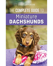 The Complete Guide to Miniature Dachshunds by David Anderson. One of the best dachshund books specifically for mini doxies.