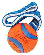 My Pal Stroganoff toys, his Chuckit basketball.