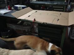 la sagoma della zona di quarantena e pupi