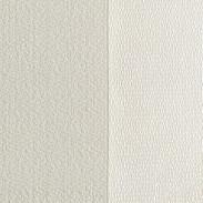 Horizion parchment