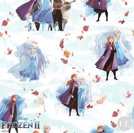 Disney-Frozen-2-Fantasy