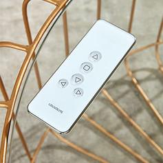 Remote-4.jpg