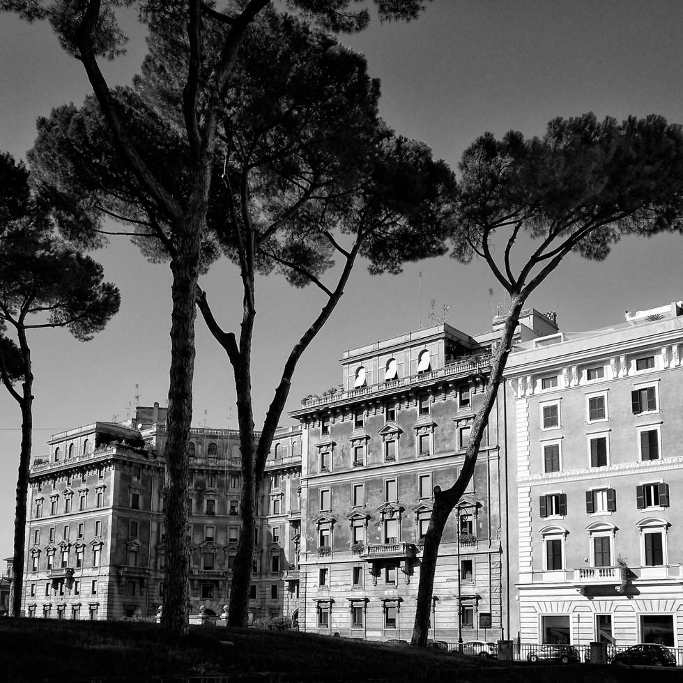 Roma 6.jpg