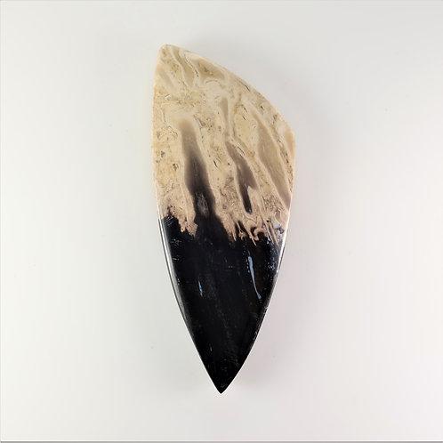FPM:TR645 (SBBT) (Fossil Palm Wood)
