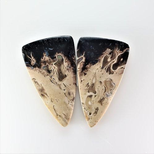 FPM:TR668,1 Pair (SBBT) (Fossil Palm Wood)