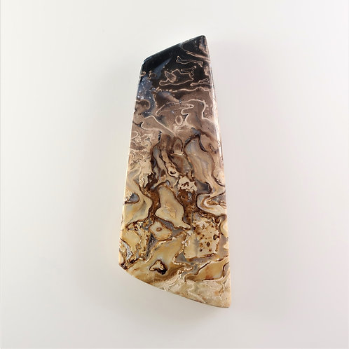 FPM:MS646 (SBBT) (Fossil Palm Wood)
