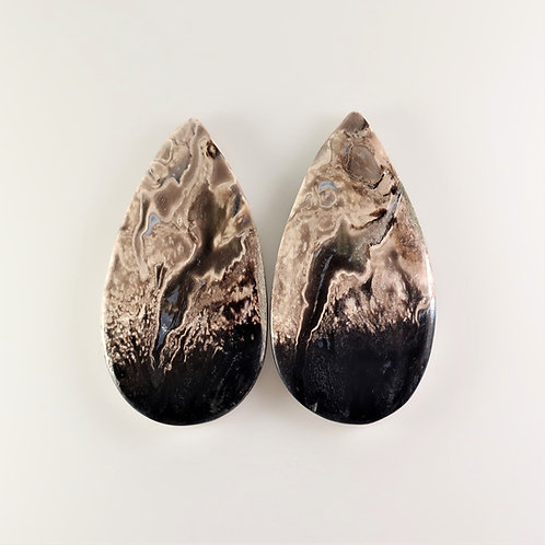 FPM:PS667, 1 Pair (SBBT) (Fossil Palm Wood)