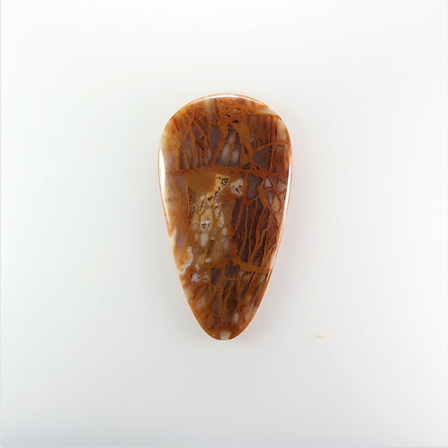 HOA:PS626 (SBBT) (Honey Oak)