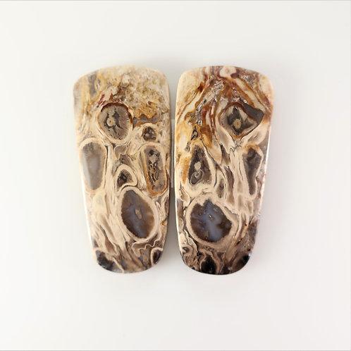 FPM:KS669,1 Pair (SBBT) (Fossil Palm Wood)