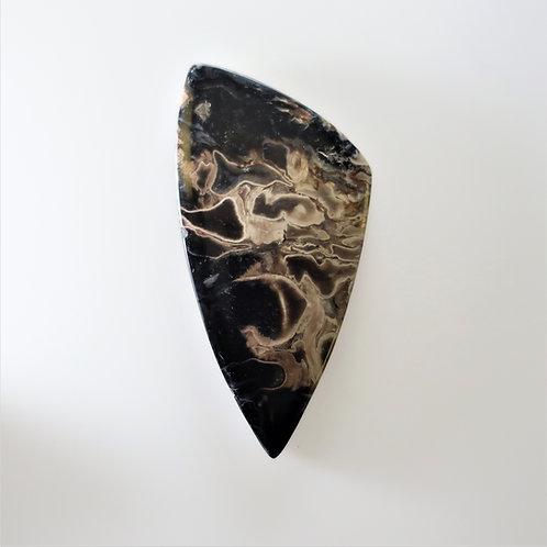 FPM:TR657 (SBBT) (Fossil Palm Wood)