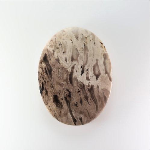 FPM:OV652 (SBBT) (Fossil Palm Wood)