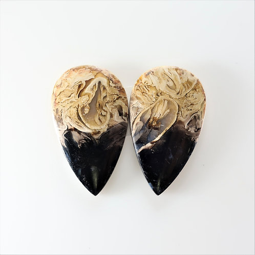 FPM:PS664,1 Pair (SBBT) (Fossil Palm Wood)