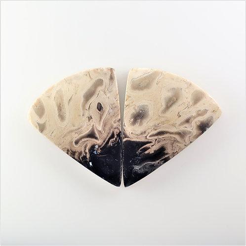 FPM:TR671, 1 Pair (SBBT) (Fossil Palm Wood)