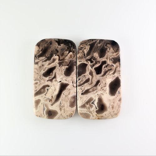 FPM: RT383,1 Pair (SBBT) (Fossil Palm Wood)