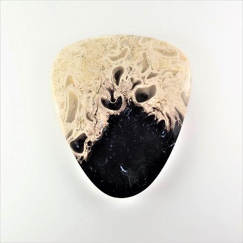 FPM:TG653 (SBBT) (Fossil Palm Wood)