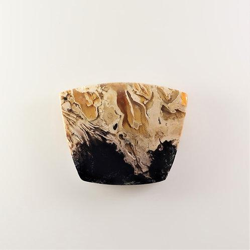 FPM:KS642 (SBBT) (Fossil Palm Wood)