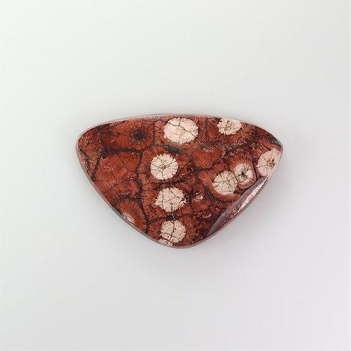 BRY:TR519-1 (SBBT) (Birds Eye Rhyolite)