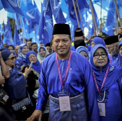 Report: Umno to contest all three seats in Pagoh for GE15, says division chief