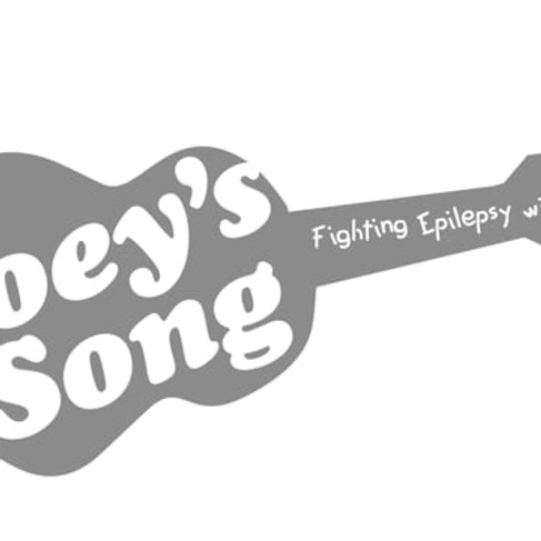 Joey's Song Overview 2020