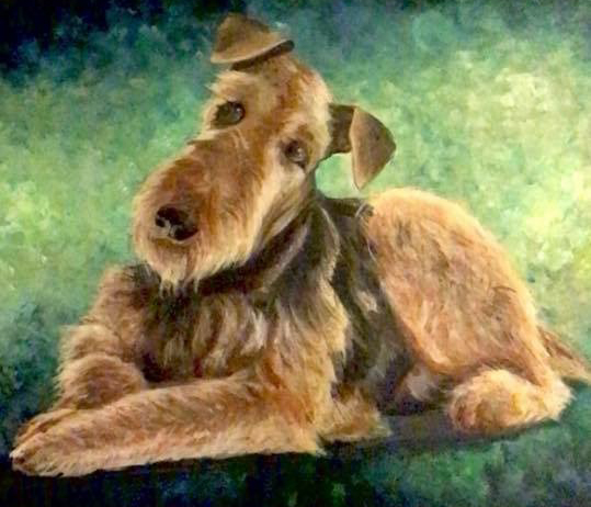 """Airedale shmairdale"""