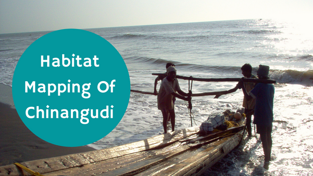 This report is based on a habitat mapping study carried out by a team of architects, students, engineers and planners under the leadership of Benny Kuriakose on the Chinangudi village in Nagapattinam District, Tamil Nadu, South India.