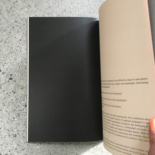 Meditate on the Blank Space Below, experimental essay by Lisa Jarrett, Direct Path to Detour pgs 25, 48 (pictured) (2017)