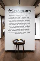 Future Ancestors, Installation View
