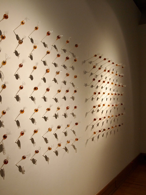 How Many Licks? (Conditioned #12,542), installation view