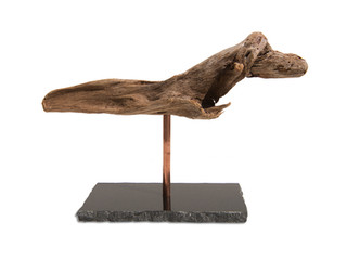 Driftwood on Stands PDF