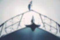 Sailing Details 27 cyanotype.jpg