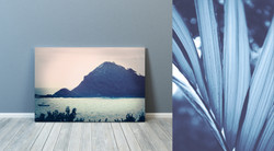 Cyanotypes against wall 3