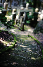 kyoto_026.jpg