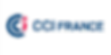 cci-france-logo2.png