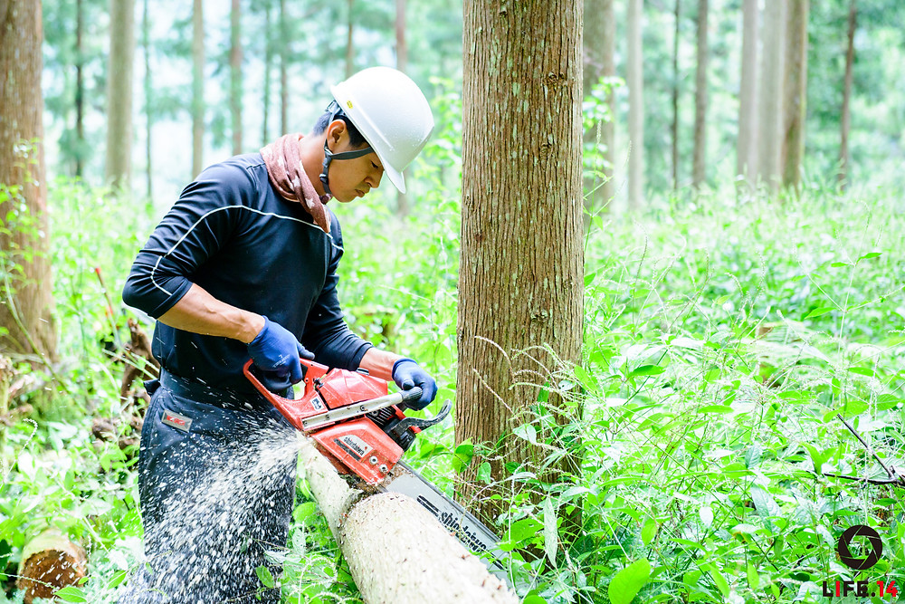 日本財団ソーシャルイノベーションフォーラム2016 www.social-innovation.jp  NPO法人持続可能な環境共生林業を実現する自伐型林業推進協会 https://jibatsukyo.com/  中嶋健造氏 自伐型林業推進協会 代表理事)…世界をリードする森林大国日本へ  安倍宏行氏 日本財団SIF2016 エディトリアルルーム編集長就任 https://abehiroyuki.jp/work/