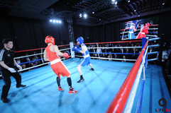 Fight-1155.jpg
