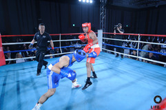 Fight-0526.jpg