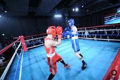 Fight-1142.jpg