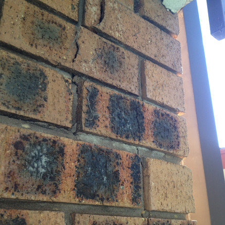 Brick Growth Damage To Home In South Sydney